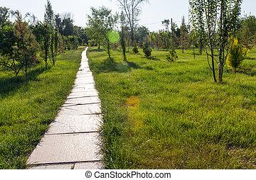 piste, parc, nature