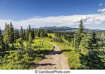 piste, vue, dans, montagnes