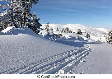 pistes, dans, les, neige