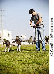 pitbull, そして, 犬, 所有者