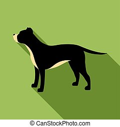 Pitbull vector icon in flat style for web