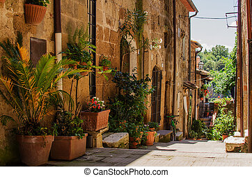 pitigliano, cheio, antigas, rua, flowerpot