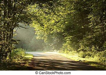 pitoresco, estrada rural, em, alvorada