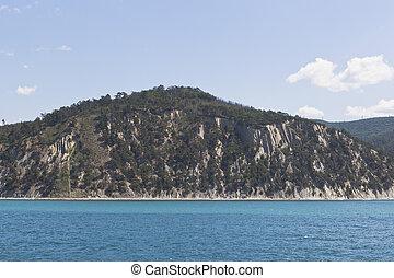 Pitsunda pine trees on a rocky seashore near resort settlement Dzhanhot in Gelendzhik district Krasnodar region