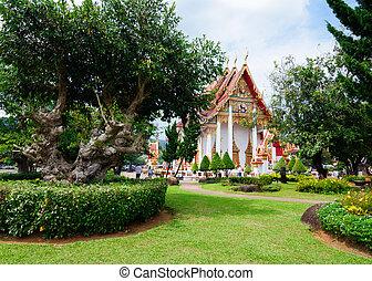 pittoresco, zona, parco, chalong, temple., wat