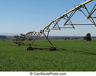 pivot irrigation system in a green field with blue sky
