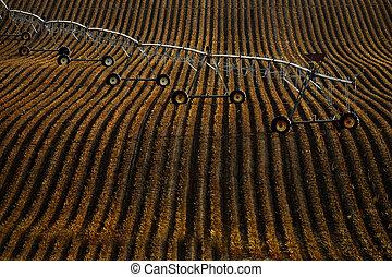 Pivot Irrigation Water Lines on Furrowed Farm Ground