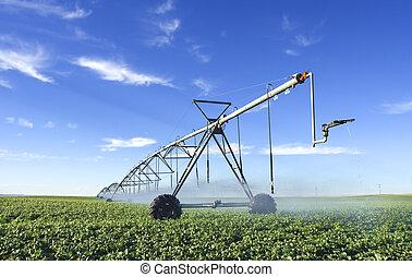 Pivot - Modern irrigation tool