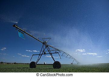 pivote, irrigación, centro, área