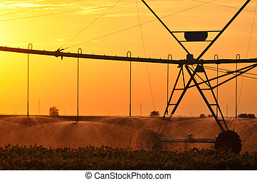 pivote, irrigación, centro, sistema