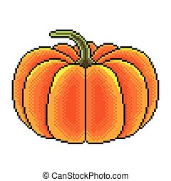 Pixel big pumpkin detailed illustration isolated vector