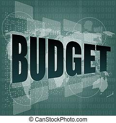 Pixeled word budget on digital screen 3d