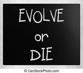 "pizarra, ""evolve, tiza, die"", blanco, o, manuscrito"