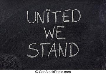 pizarra, nosotros, unido, estante, frase