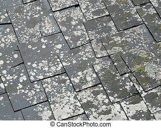 pizarra, viejo, azulejos, techo