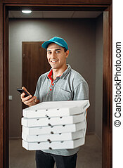 Pizza delivery boy calls to customer