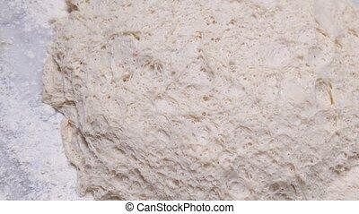 alveolus gluten net fermentation on bread dough