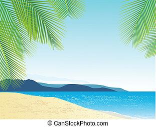 pláž, grafické pozadí