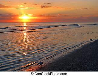 pláž, východ slunce