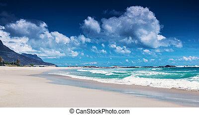 plaża, afryka, południe