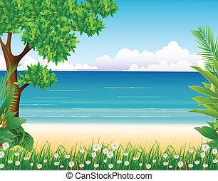 plaża, las, tło