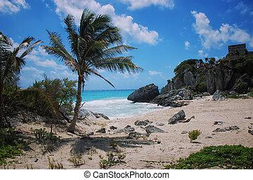 plaża, na, tulum wytłukuje, w, meksyk