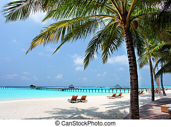 plaża, panorama, podróż, urlop, tropikalny, tło