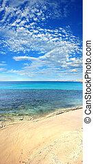plaża, pionowy