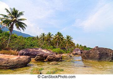 plaża, raj