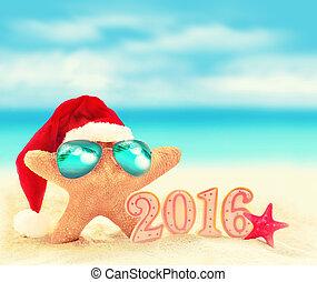 plaża, rozgwiazda, lato, święty, sunglasses, hat.