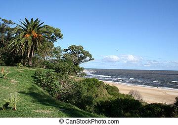 plaża, w, atlantida