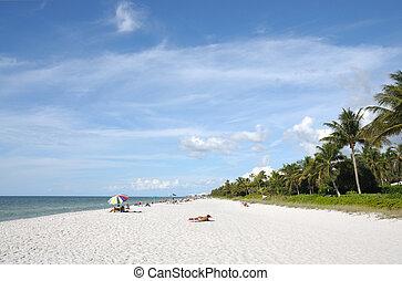 plaża, w, neapol, floryda