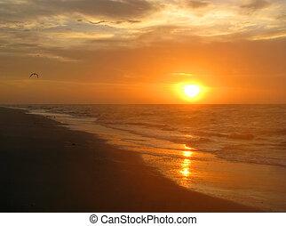 plaża, wschód słońca