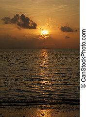 plaża, zachód słońca ocean