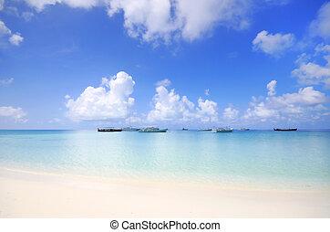 plażowa scena