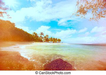 plażowe zwolnienie, sztuka, lato, ocean