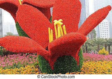 plac, kwiat, guangzhou, obywatel