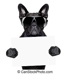 placard dog - dog holding a blank placard or banner