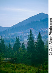 mountain village in the Carpathians