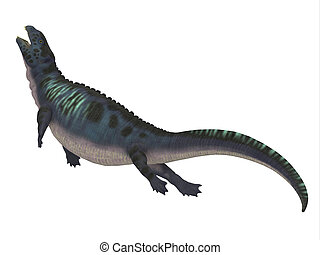 Placodus Dinosaur Side Profile