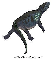 Placodus Dinosaur Tail