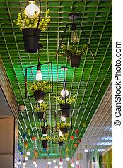 plafon csillogó, belső, kávéház, color., bulb., zöld