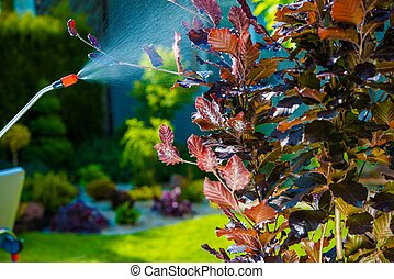 plaga de jardín, control, rociar