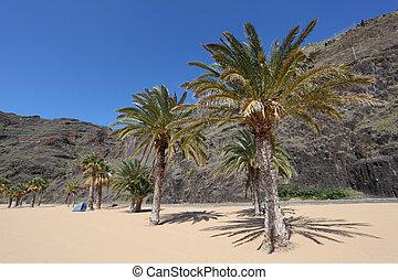 plage, île, de, canari, playa, tenerife, teresitas, espagne, las