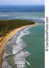 plage, aérien, dominicain, île, exotique, république, vue