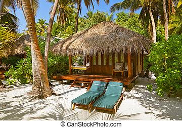 plage, bungalow, -, maldives