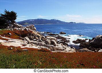 plage caillou, californie