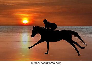 plage, cheval, silhouette, cavalier, galoper