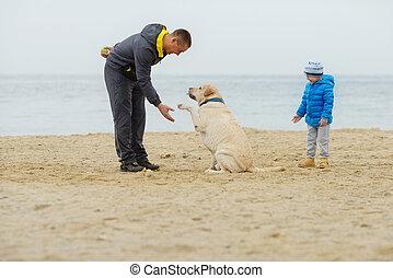 plage, chien, famille