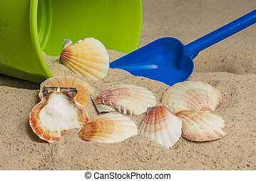 plage, coquilles, jouets, mer sable